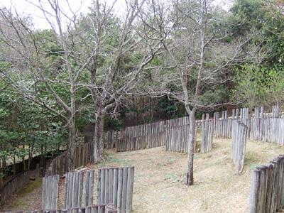 神戸青少年公園